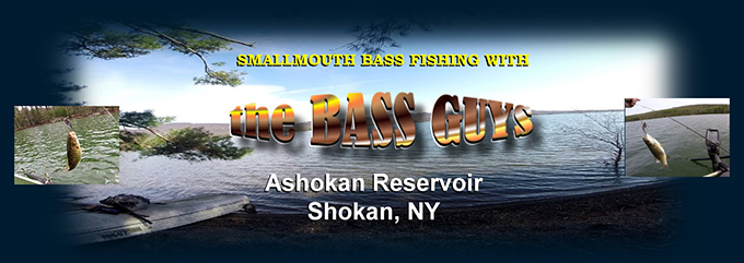 theBASSguys fish for smallmouth bass with crank biats and soft plastic worms and tubes.