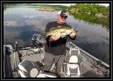 We catch largemouth Bass on the Warrior Buzzbait !