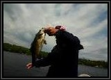 Now that is one nice BASS caught with the Worm!!