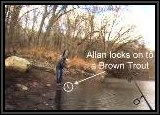 Allan & Pete locked on to a few trout with the same 1/4 oz gold lure too but did not have as many hits as the writer.